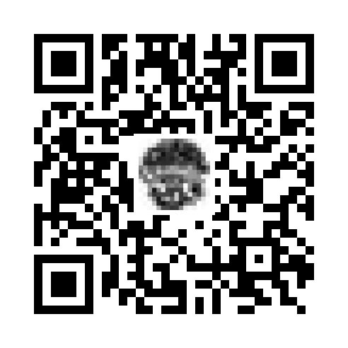 QR_513570
